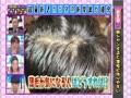イカさまタコさま 超最新!2012年度版カラダの新常識SP 無料動画~2012年8月22日